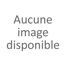 CLOUEUR BARDAGE MAX565S